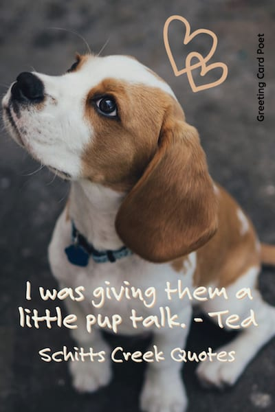 Pup Talk Quote