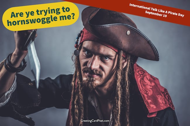 Pirate lingo and expressions